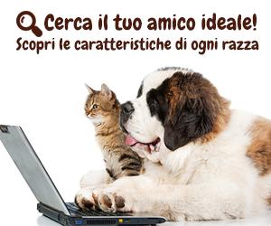 Cerca la razza ideale di cani e gatti